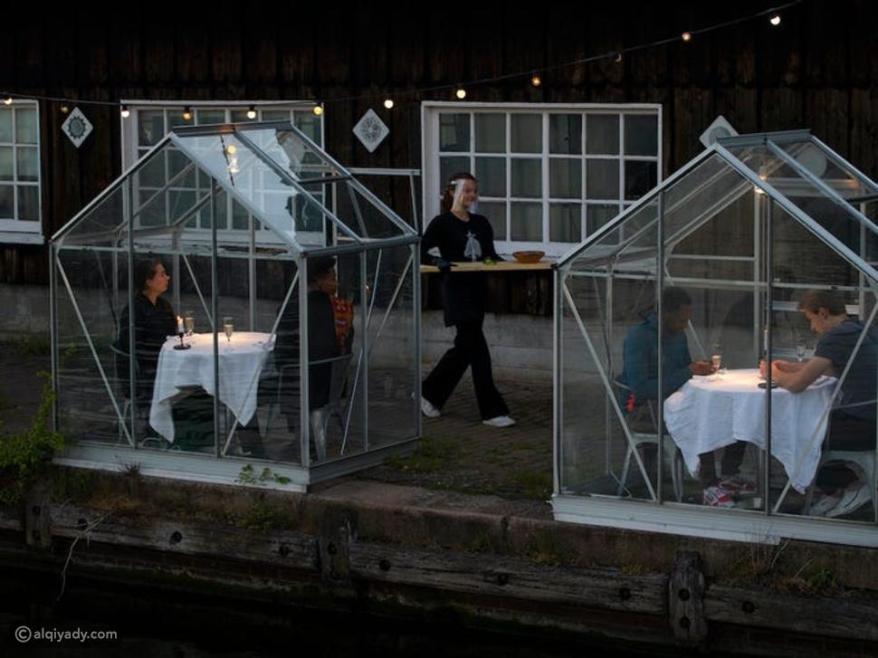 العشاء في زمن كورونا: مطعم هولندي يقدم الطعام للزبائن في بيوت زجاجية