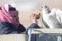 أحد صقور الأمير محمد بن نايف