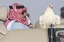 الأمير محمد بن نايف في رحله صيد مع صقوره