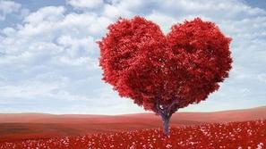 بالصور كيف تختلف احتفالات عيد الحب حول العالم؟..تقاليد بمثابة مفاجأة!