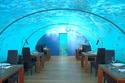 صور: مطعم ايثا في المالديف.. تناول العشاء تحت سطح البحر