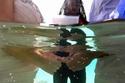 مراسم زفاف ساحرة وسط مياه البحر