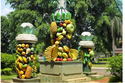 صور: حديقة ميكارساري في إندونيسيا