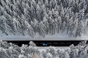 طريق في غابة بجبال الخام شرقي ألمانيا