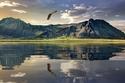 أحد جبال نيوزلندا