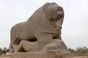 أسد بابل