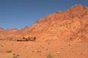 صور: اكتشاف سفن في صحراء سيناء.. كيف وصلت إلى هناك؟