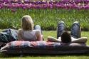 استلق تحت الشمس واستمتع بالربيع