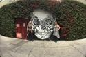 فيديو وصور: متحف الموت بكاليفورنيا