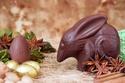 شوكولاتة على شكل أرانب البيلبي في أستراليا