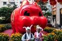 احتفالات حول العالم برأس السنة الصينية الجديدة 1