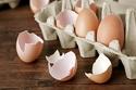 توصل العلماء إلى قدرة قشر البيض على تسريع شفاء العظام المكسورة،
