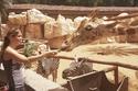 حديقة حيوانات أبوظبي هي أفضل وجهة سياحية للعائلات - 1