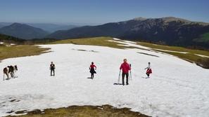 المحمية القوقازية: لقطات رائعة من أكبر محمية غابات جبلية في أوروبا