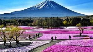 فيديو وصور: جبل فوجي في اليابان.. قطعة من التراث العالمي