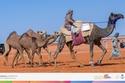 عن أول مشاركة نسائية في تاريخ مهرجانات الإبل في السعودية