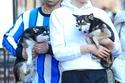 جو جوناس وزوجته صوفيا تيرنر وكلابهم
