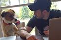 كريس إيفانز وكلبه المفضل