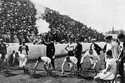مسابقات الماراثون عام 1904