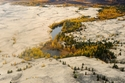 تشارا: صحراء من الرمال الذهبية في قلب روسيا 1