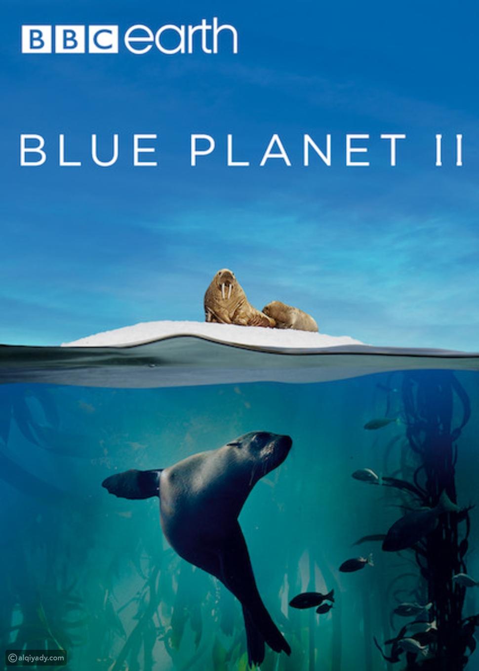 مسلسل البحار الوثائقي Blue Planet II