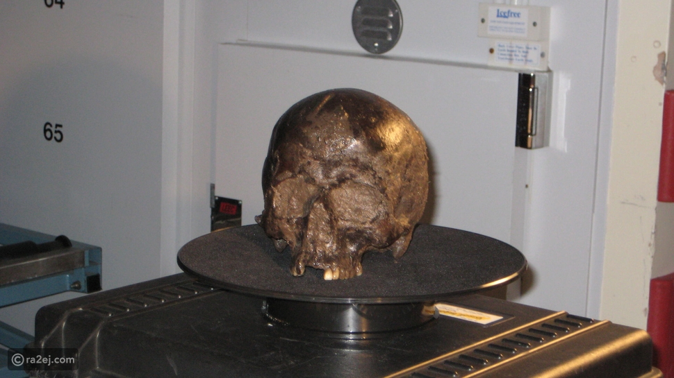 فك لغز دماغ عمرها 2600 عاماً بحالتها الطبيعية