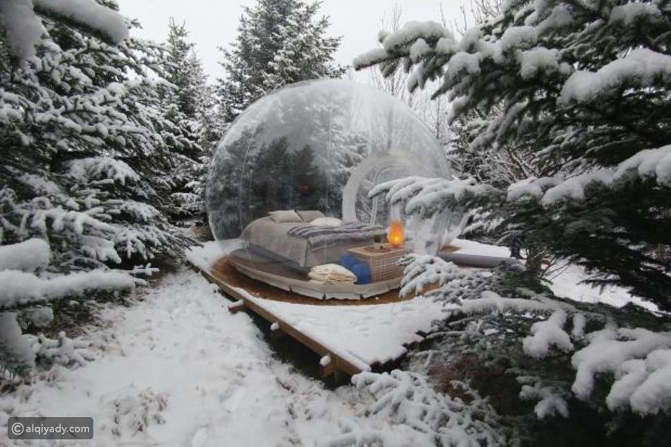 في فنادق الفقاعات: خذ قسط من الراحة واستمتع بالطبيعة