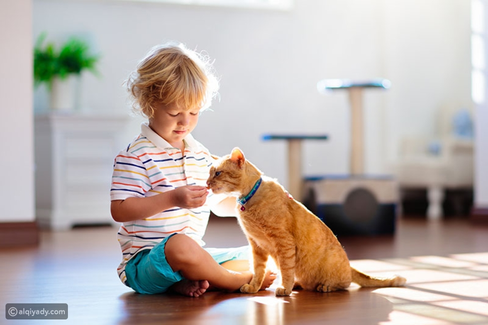 7 أسباب تجعل الحيوانات الأليفة مفيدة للأطفال