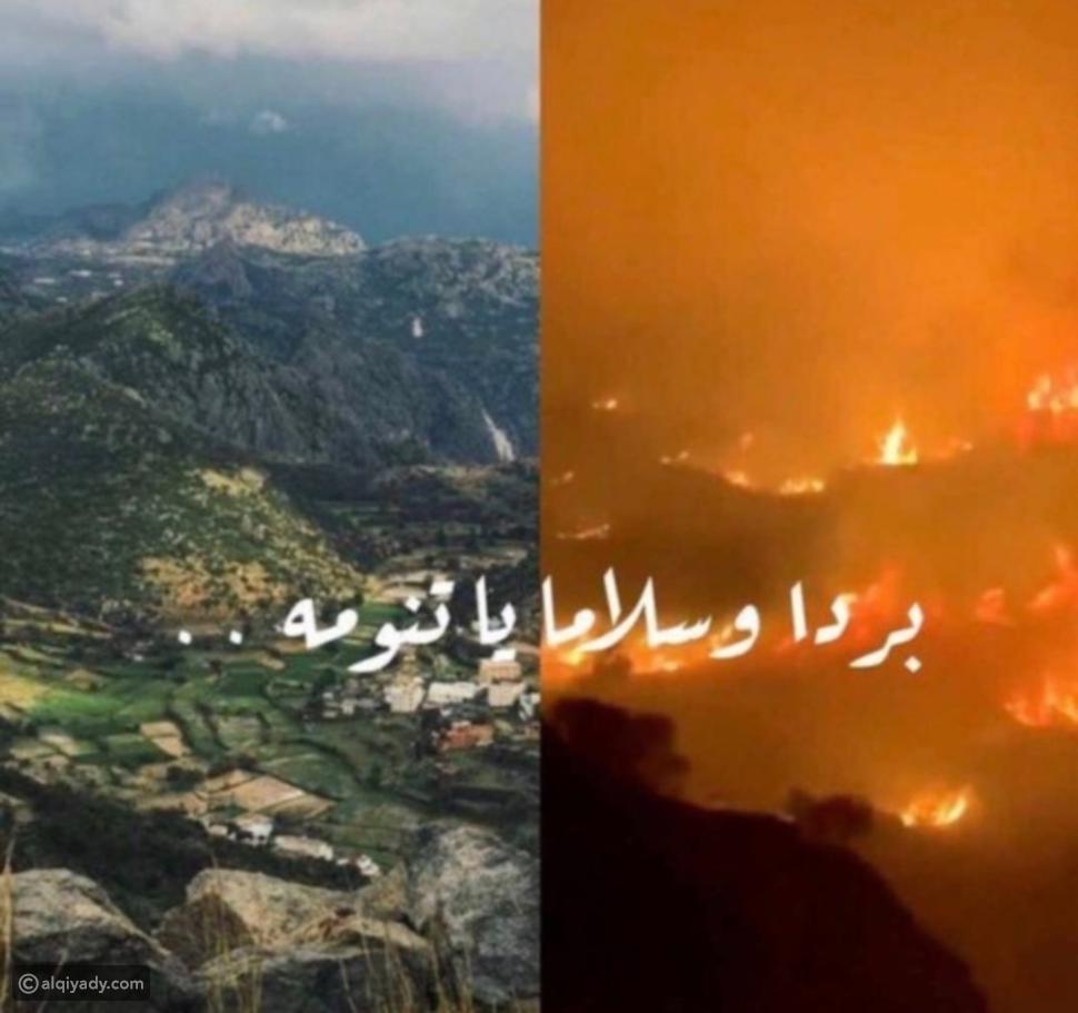 حريق تنومة: نيران مستعرة تلتهم غابات جنوب السعودية