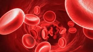 طفرة علمية ستنقذ حياة الملايين: تحويل كل فصائل الدم إلى فصيلة واحدة