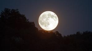 القمر الوردي العملاق يضيء سماء الأرض فما سبب تسميته؟