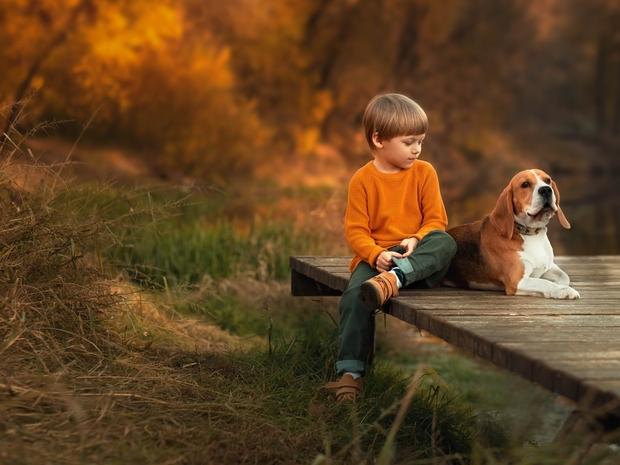 دراسة: امتلاك كلب في الطفولة يقلل الإصابة بالانفصام بنسبة 24%