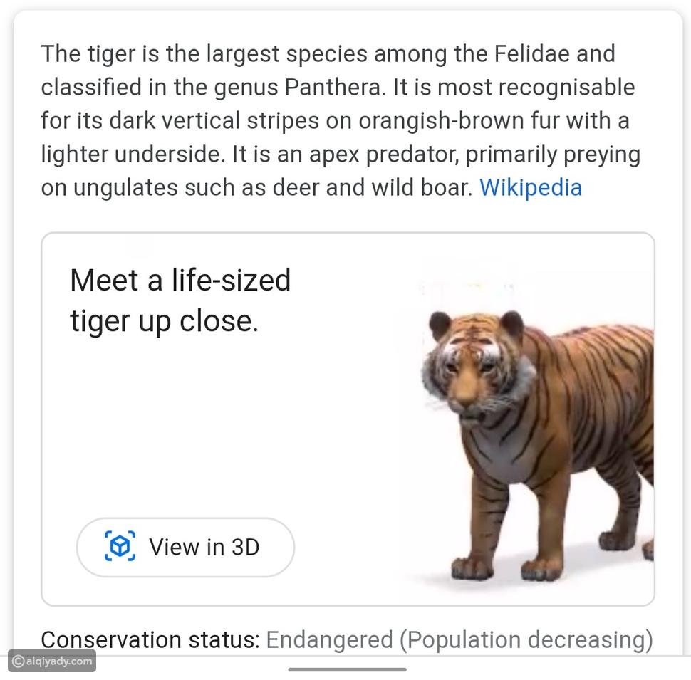 حديقة حيوانات 3D في منزلك: هكذا تُسلي غوغل أطفالك في العزل المنزلي