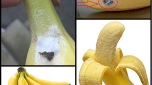 احذر.. هذا النوع من الموز يسبب الوفاة!