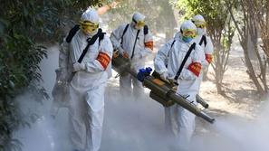 كورونا ليس الأخطر على البشر: هذه الأمراض تحصد أرواح الملايين كل عام