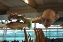 """مطار ويلينغتون، نيوزيلندا: يعرض المطار مجسمّات لشخصيات من فيلم """"The Lord of the Rings""""، حيث تم تصنيفه من ضمن أجمل المطارات عام 2003"""