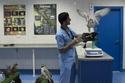 أول صور من داخل مستشفى 5 نجوم للصقور فقط في أبو ظبي..الأكبر في العالم