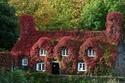 فصل الخريف في مقاطعة ويلز في بريطانيا