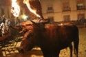 بالصور: مهرجان ثور النار في إسبانيا