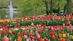 صور أبرز وأجمل 15 موقعاً يجب أن تزورهم في بلد الزهور