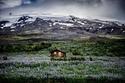 آسلندا