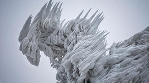 صور مذهلة لعاصفة تحول الأشجار لمنحوتات جليدية