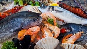 تعرف على فوائد زيت السمك ولماذا يجب تناوله بشكل مستمر