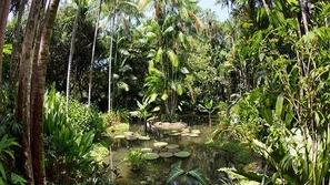 بالصور: حدائق تعد من التراث العالمي شاهدوا جمالها